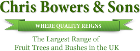 Chris Bowers and Sons - Fruit Tree Specialists
